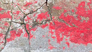close_up_shot_of_cracked_old_red_wall